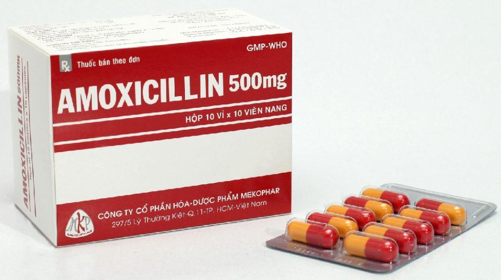 Thuốc amoxicillin 500mg là thuốc gì?